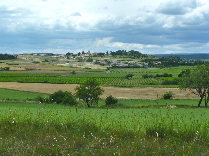 Patchwork fields 1